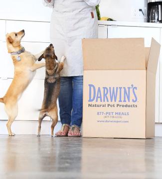 Prairie Paws More Ways To Help / Donate / Affiliates