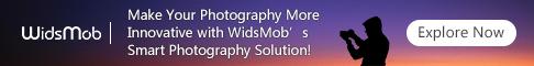 WidsMob