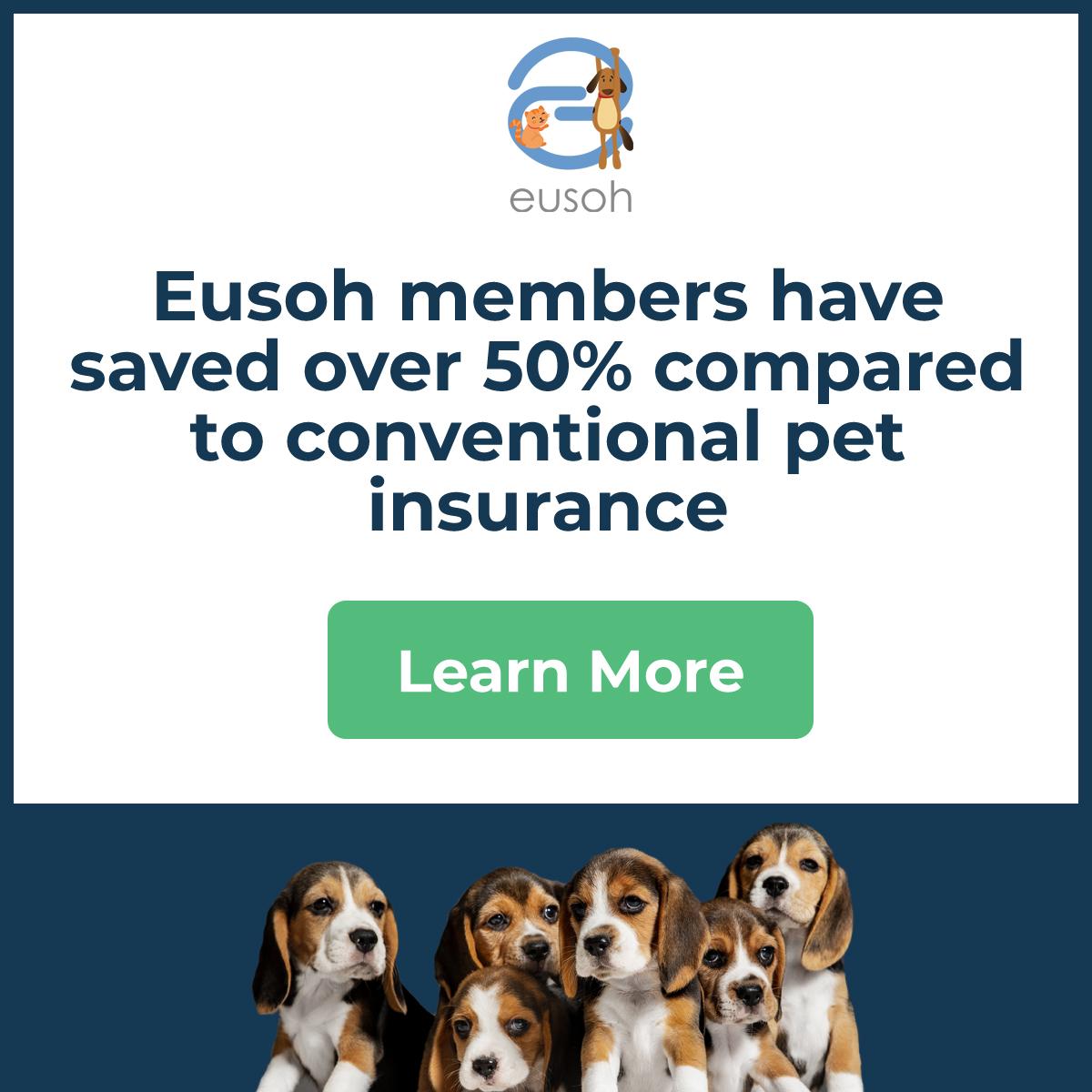 Dog Health Insurance 2021- Important Consideration 3