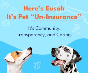 Eusoh is Dog Uninsurance