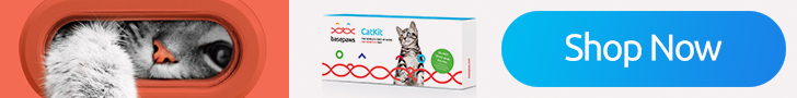 Basepaws Cat DNA Test buy button