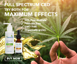 Premium full-spectrum CBD oil