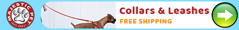 Shop Pet Collars and Leashes