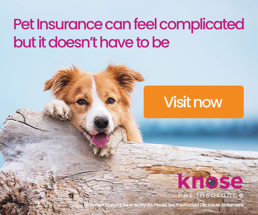 Pet Insurance can feel complicated but it doesn't have to be! Check out Knose!