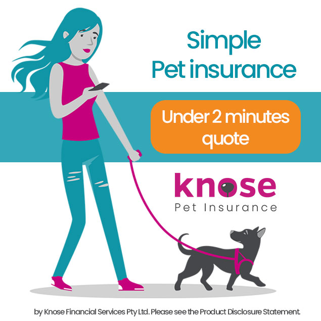 Simple Pet Insurance! Under 2 Minutes Quote!