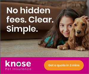 Knose Financial Services - 300 x 250