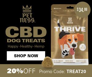 CBD Thrive Treats