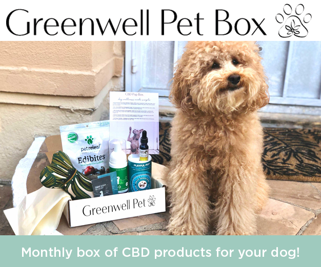 Monthly box of CBD products for your dog!