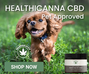 HealthiCanna CBD Dog Treats