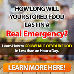 learn to grow your own food for emergency situations