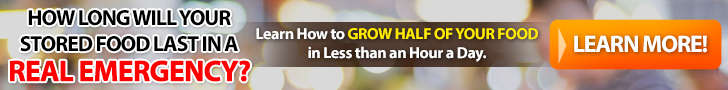 learn to grow your own food- the Grow Network