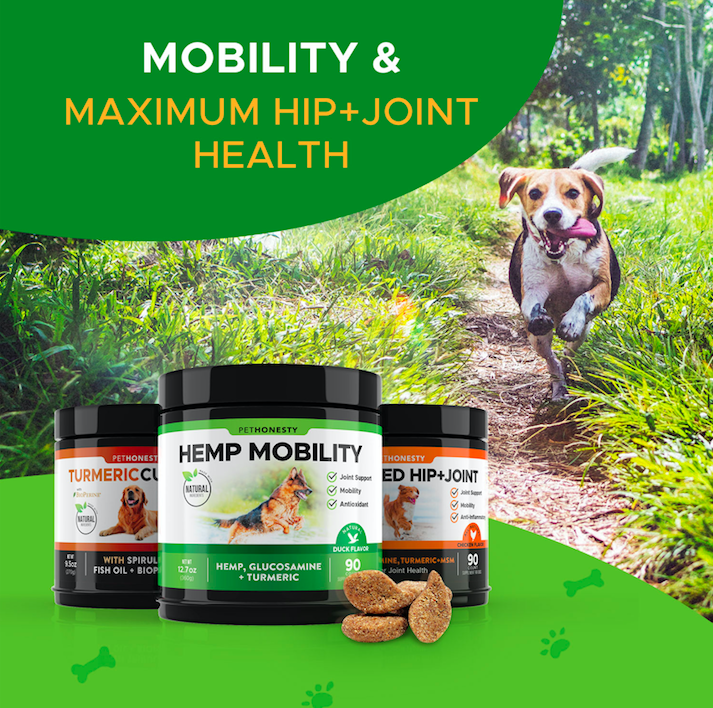 PetHonesty.com Healthy Pets