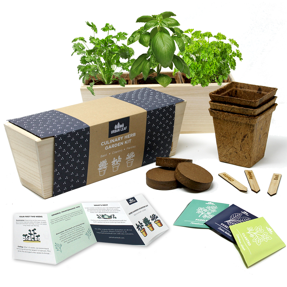 Urban Leaf Complete Herb Garden Kit