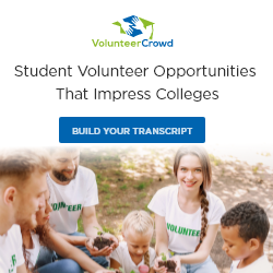 Build Your Transcript