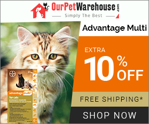 Cheapest Advantage Multi for Cats Online at 10% Extra Discount & Free Shipping