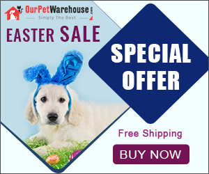 Easter Treat - Save Up to 60% + 10% Extra Discount & Free Shipping