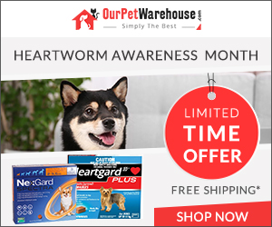 Limited Time Offer! Extra 10% Discount on all heartworm prevention treatment + Free Shipping All Orders.