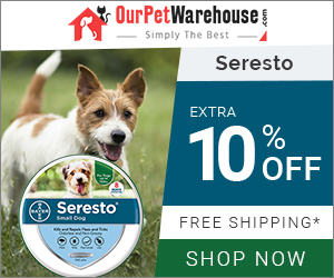 8 Months of Flea & Tick Prevention Collar for Your Dog at Extra Discount & Free Shipping