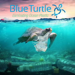 Blue Turtle Project