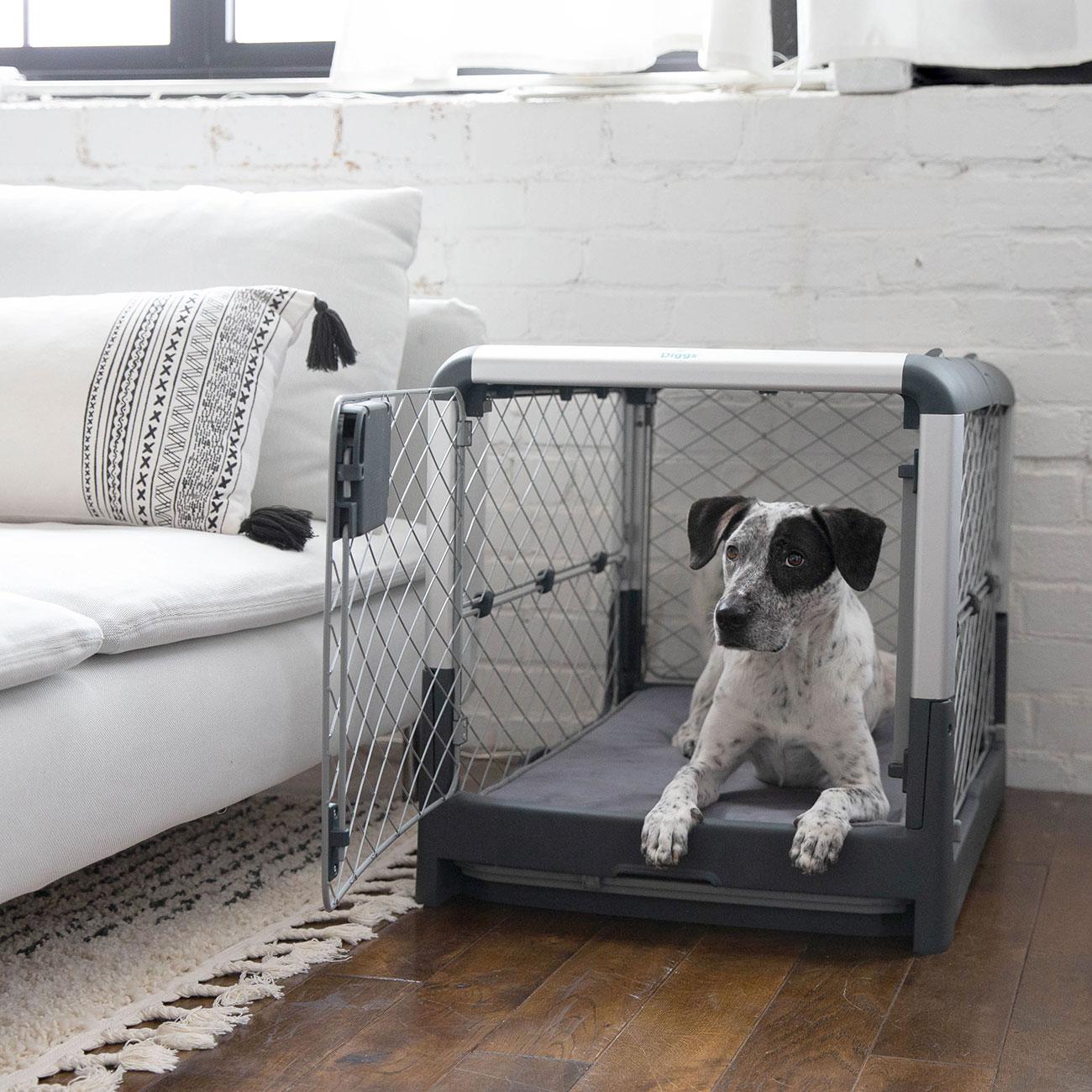 Best Modern Dog Crate
