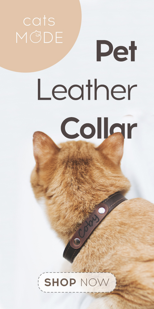 Leather Collar Personalized Collar for Pets