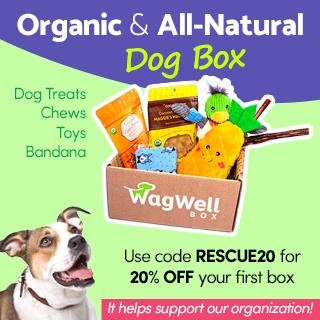 WagWell Box