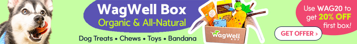 Get WagWell Box Now
