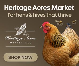 backyard chickens health supplies