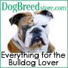 Bulldog 100x100 031908 Bulldog Lover Calendars and Gifts
