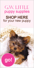 Yorkie supplies and coupons