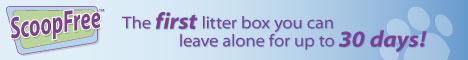 self cleanig litterbox