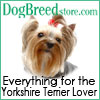 Yorkshire 100x100 031908 Yorkshire Terrier Lover Calendars