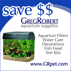 Fish and Aquarium Supply at GregRobert