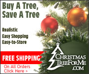 Buy Your Christmas Tree Today at Christmas Tree For Me!