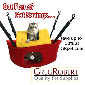 Discount Ferret Supplies at GregRobert