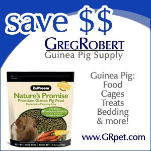 Guinea Pig Supplies at GregRobert