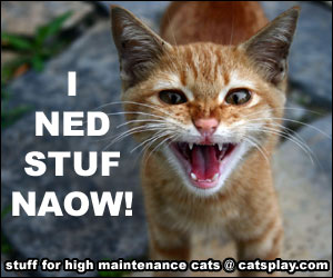 cats stuff