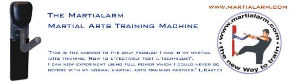 Martial Arts Training Partner